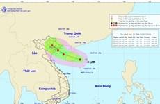 Áp thấp nhiệt đới mạnh lên thành bão số 2 với tên gọi MUN