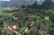 Xác minh nguồn gốc đất tranh chấp tại nhà máy tinh bột sắn Thuận Châu
