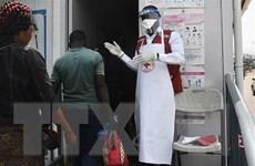 CHDC Congo: Thành phố lớn nhất xác nhận bùng phát dịch Ebola