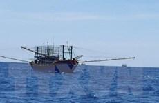 Vụ tàu cá NA 95899 TS: Phát hiện hai thi thể trôi gần khu vực tàu chìm
