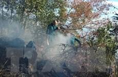 Cơ bản khoanh vùng, khống chế vụ cháy rừng trong đêm tại Đà Nẵng