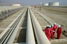 Ai Cập phát hiện mỏ khí đốt mới ở khu vực đồng bằng sông Nile