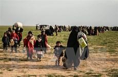 Syria: 400.000 người phải lánh nạn do xung đột tại khu vực Tây Bắc