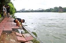 Bờ kè hồ Hoàn Kiếm sụt lún nghiêm trọng gây nguy hiểm cho người đi bộ