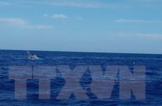 Đà Nẵng: Đưa 6 thuyền viên bị chìm tàu về bờ an toàn
