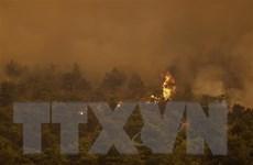 [Video] Cận cảnh Hy Lạp dùng trực thăng ngăn cháy rừng