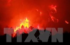 Pháp khống chế thành công vụ cháy rừng dữ dội ở miền Nam