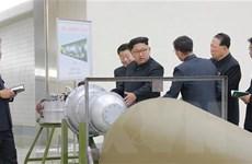 Nhật Bản: Triều Tiên đạt được thành tựu thu nhỏ đầu đạn hạt nhân
