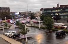 Mỹ: Đâm xe liên hoàn làm hàng chục người thương vong