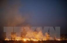 [Video] Cháy rừng Amazon đang diễn biến rất phức tạp