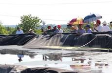 Kết luận những sai phạm về môi trường của Công ty AB Mauri Việt Nam