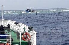 Cà Mau: Kịp thời ứng cứu 3 ngư dân gặp nạn trên biển
