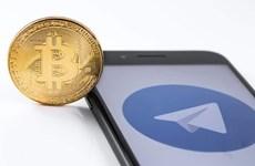 Telegram 'âm thầm' phát triển tiền điện tử mang tên Gram