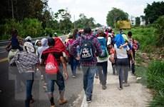 Mexico bác bỏ việc ký thỏa thuận 'nước thứ ba an toàn' với Mỹ