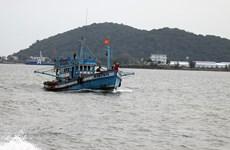 'Thẻ vàng' IUU: Khắc phục điểm yếu để thủy sản lấy lại thẻ xanh