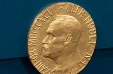 Nobel 2019: Hồi hộp chờ các chủ nhân giải thưởng lộ diện