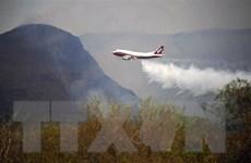 Bolivia đã dập tắt hoàn toàn các đám cháy rừng Amazon