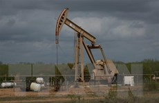 Giá dầu thế giới giảm nhẹ trước các số liệu trái chiều