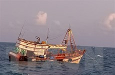 Bà Rịa-Vũng Tàu: Cứu nạn và lai dắt thành công một tàu cá về bờ