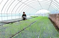 Tháo gỡ điểm nghẽn để xây dựng nông thôn mới bền vững