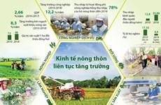 [Infographics] Kinh tế nông thôn liên tục tăng trưởng