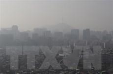 Hàn Quốc hạn chế ôtô theo biển chẵn-lẻ nhằm giảm bụi mịn