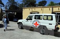 Tin tặc đang nhắm tới các tổ chức nhân đạo của Liên hợp quốc
