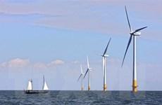 IEA dự báo điện gió càng chiếm ưu thế trong tương lai