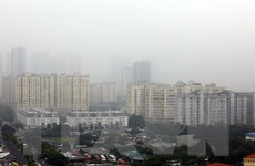 Hà Nội: Từ 2021 không sử dụng than tổ ong để giảm thiểu ô nhiễm