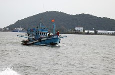 Khắc phục 'thẻ vàng' IUU: Quản lý giám sát chặt hành trình tàu cá