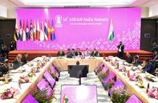 Ấn Độ và ASEAN ủng hộ duy trì hòa bình và ổn định ở Biển Đông