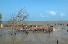 Quảng Trị: Phát hiện hai thi thể nam giới trôi dạt vào bờ biển