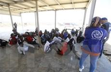 Libya trục xuất hàng chục người nhập cư bất hợp pháp