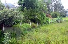 Kỷ luật một số cán bộ liên quan sai phạm đất đai tại Phan Thiết