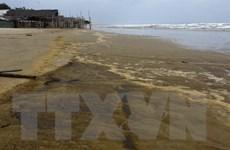 Quảng Ngãi: Quan trắc chất lượng nước và tảo ở vùng nước biển đổi màu