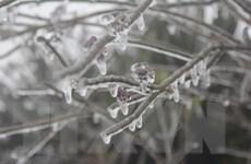 Điện Biên: Nền nhiệt giảm sâu, băng mỏng xuất hiện ở nhiều địa bàn