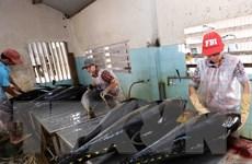 Quyết liệt chấm dứt các vi phạm về khai thác hải sản IUU