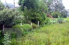 Từ ngày 1/1/2020 giá nhiều loại đất tại Nghệ An sẽ tăng