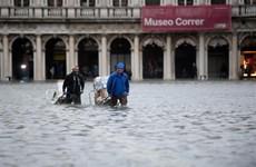 Venice đối mặt với hậu quả khắc nghiệt của đợt thủy triều lịch sử