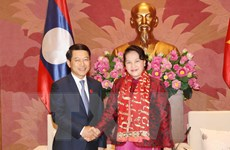 Chủ tịch Quốc hội Nguyễn Thị Kim Ngân tiếp Bộ trưởng Ngoại giao Lào