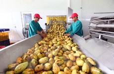 Doanh nghiệp là 'đầu tàu' dẫn dắt chuỗi giá trị nông sản