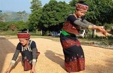 Cuộc sống bình yên của người dân tộc Xá ở Yên Bái