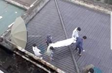 Nghệ An: Bệnh nhân tử vong khi rơi từ tầng 7 của bệnh viện