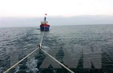 Biên phòng Quảng Trị lai dắt thành công 2 tàu cá vào bờ an toàn