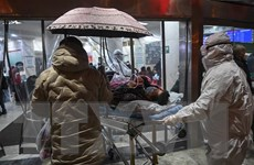 Thêm nhiều quốc gia khuyến cáo công dân hạn chế tới Trung Quốc