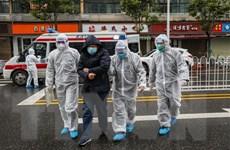 Nhiều chuyến bay tới Trung Quốc bị đình chỉ, các nước sơ tán công dân