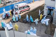 Bỉ xác nhận trường hợp đầu tiên nhiễm virus corona chủng mới