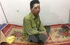 Đắk Lắk: Thêm một vụ hành hung kiểm lâm Vườn quốc gia Yok Đôn