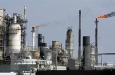 Giá dầu thế giới rơi xuống mức thấp nhất trong hơn một năm