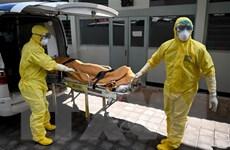 Indonesia cách ly 70 nhân viên y tế, Hong Kong đón 500 người từ Vũ Hán